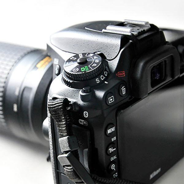 miss red fox - Fotografie - Nicht ohne meine Kamera