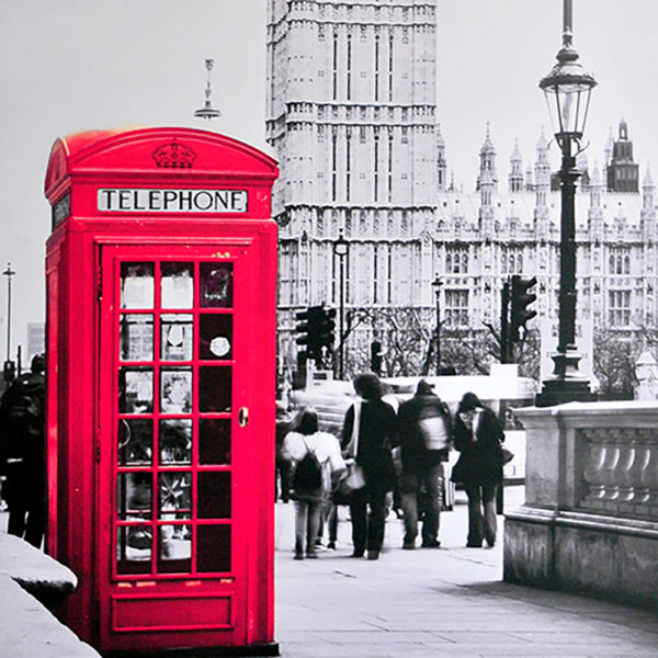 miss_red_fox_xxl_bild_london