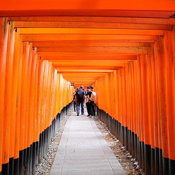 Japan – 4 – Nara, Fushimi Inari, Himeji