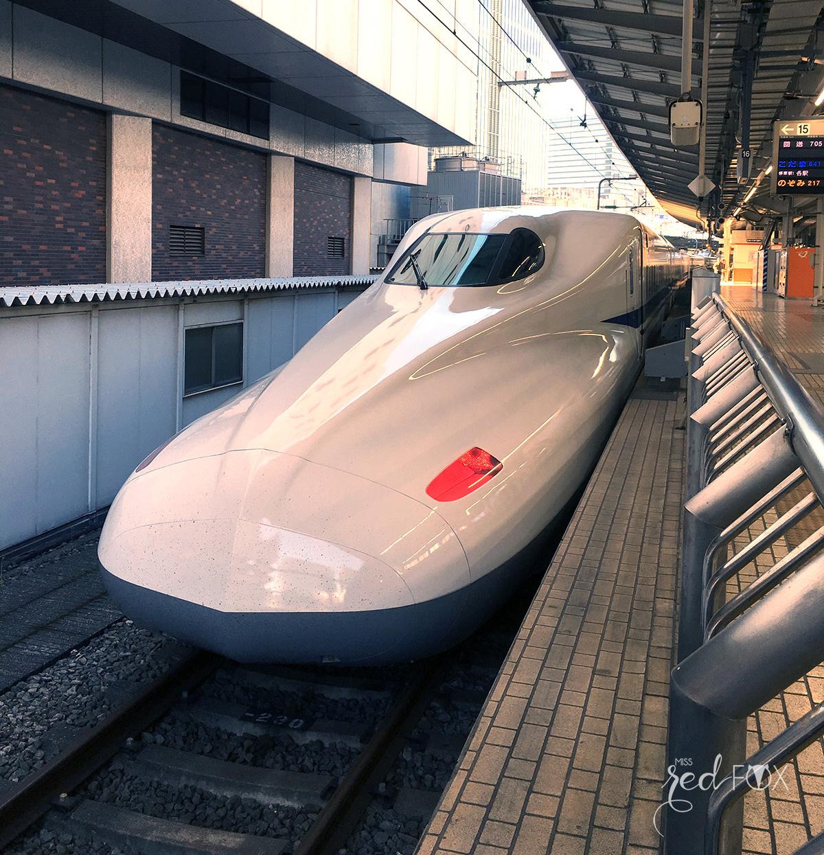 missredfox - Japan - Fuji - 01