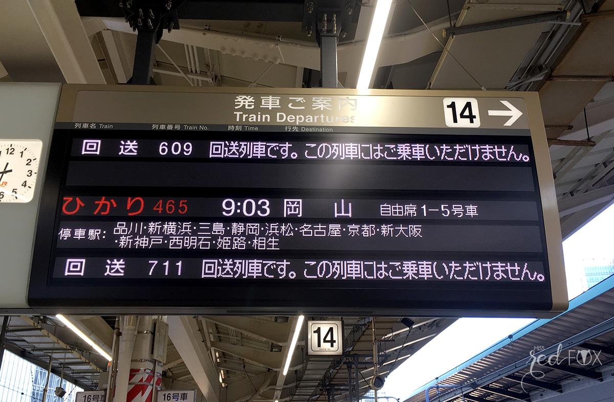 missredfox - Japan - Fuji - 02