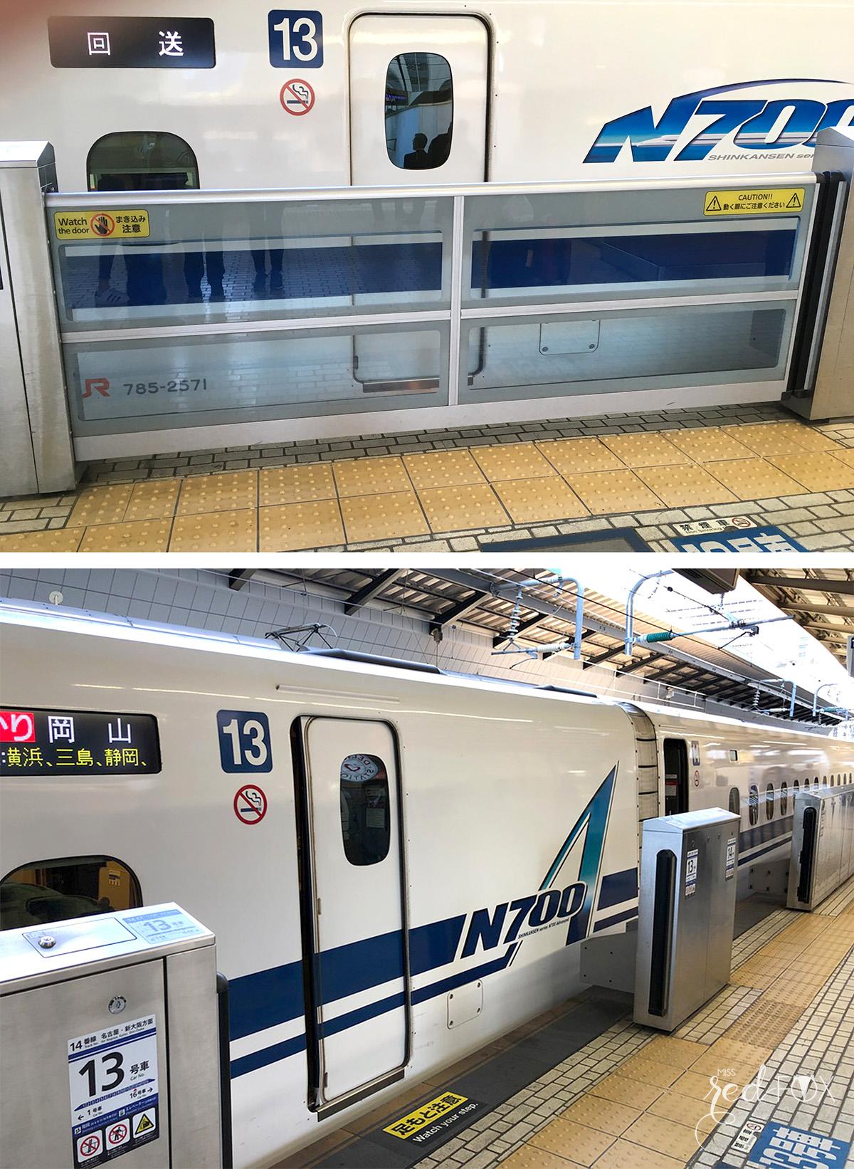 missredfox - Japan - Fuji - 03