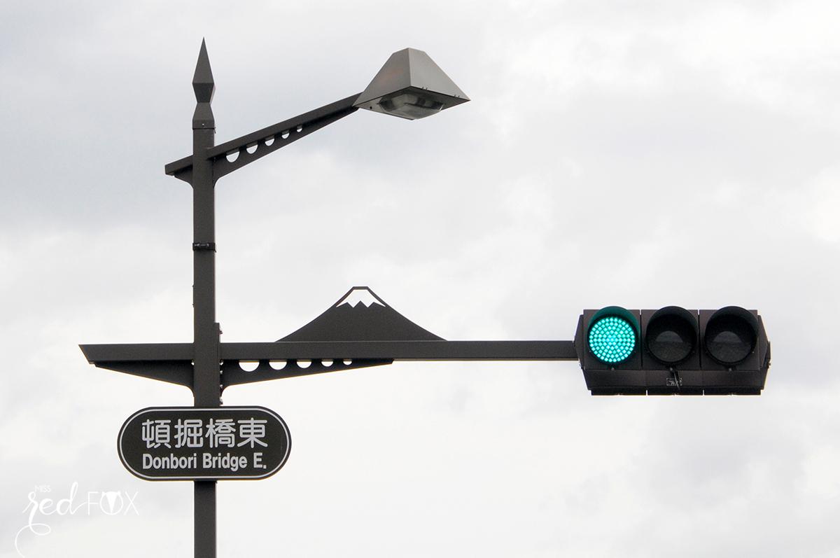 missredfox - Japan - Fuji - 36