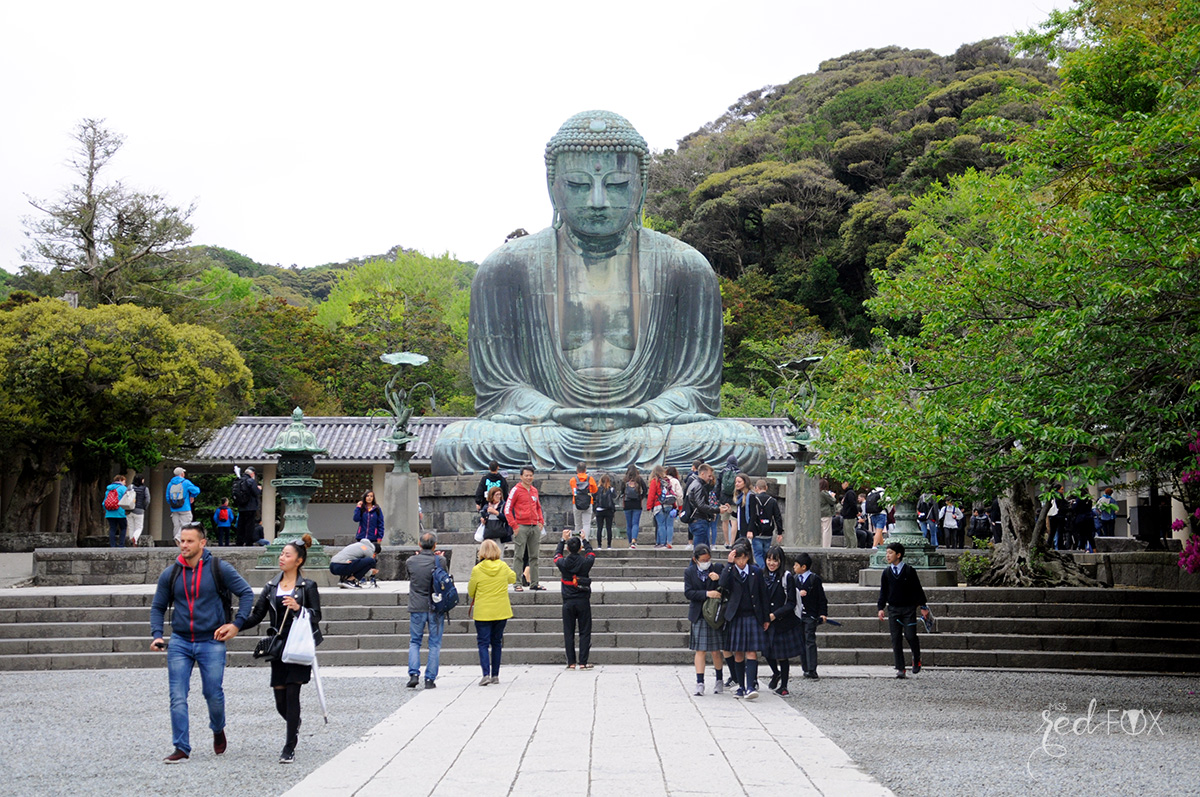 missredfox - Japan - Kamakura - 06