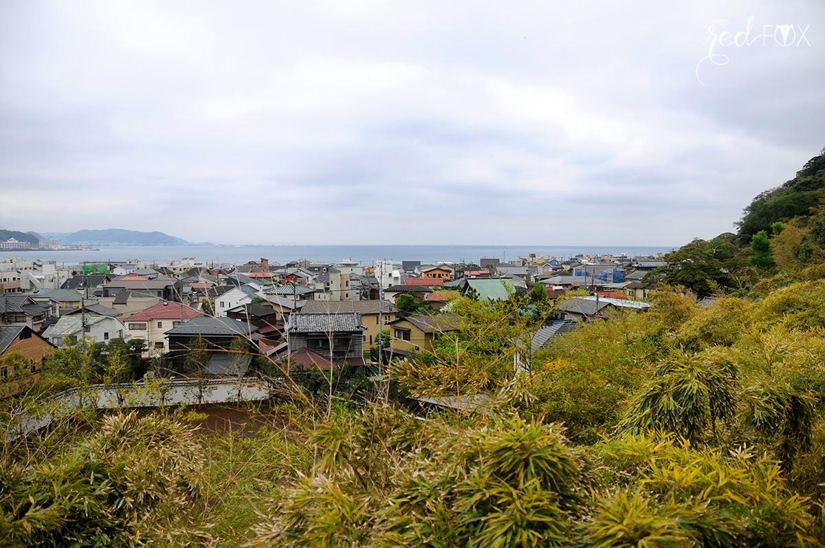 missredfox - Japan - Kamakura - 24