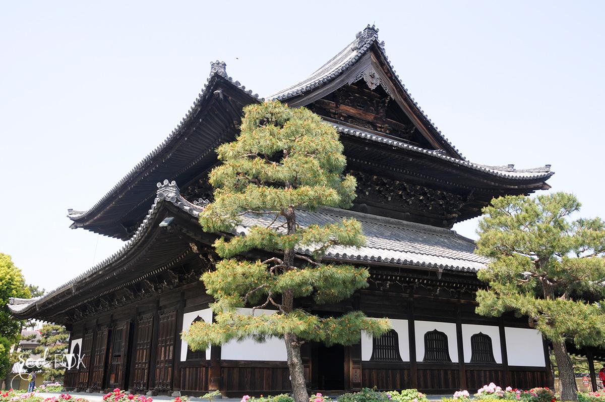 missredfox - Japan - Kyoto - 28