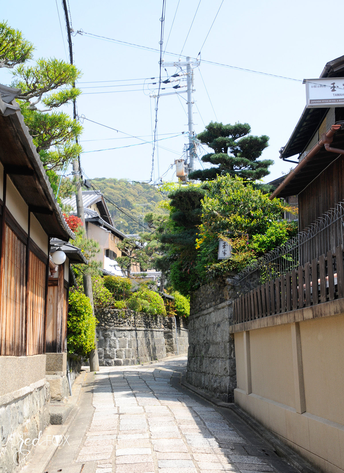 missredfox - Japan - Kyoto - 32