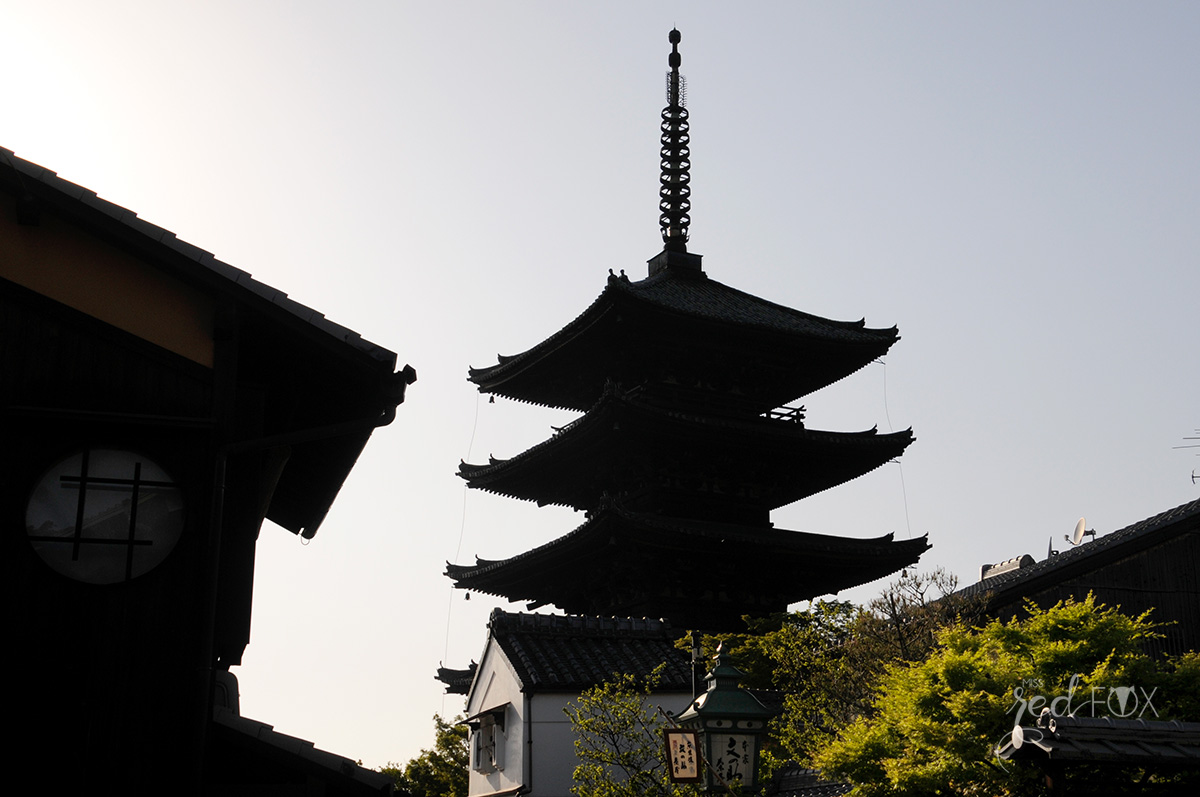 missredfox - Japan - Kyoto - 45