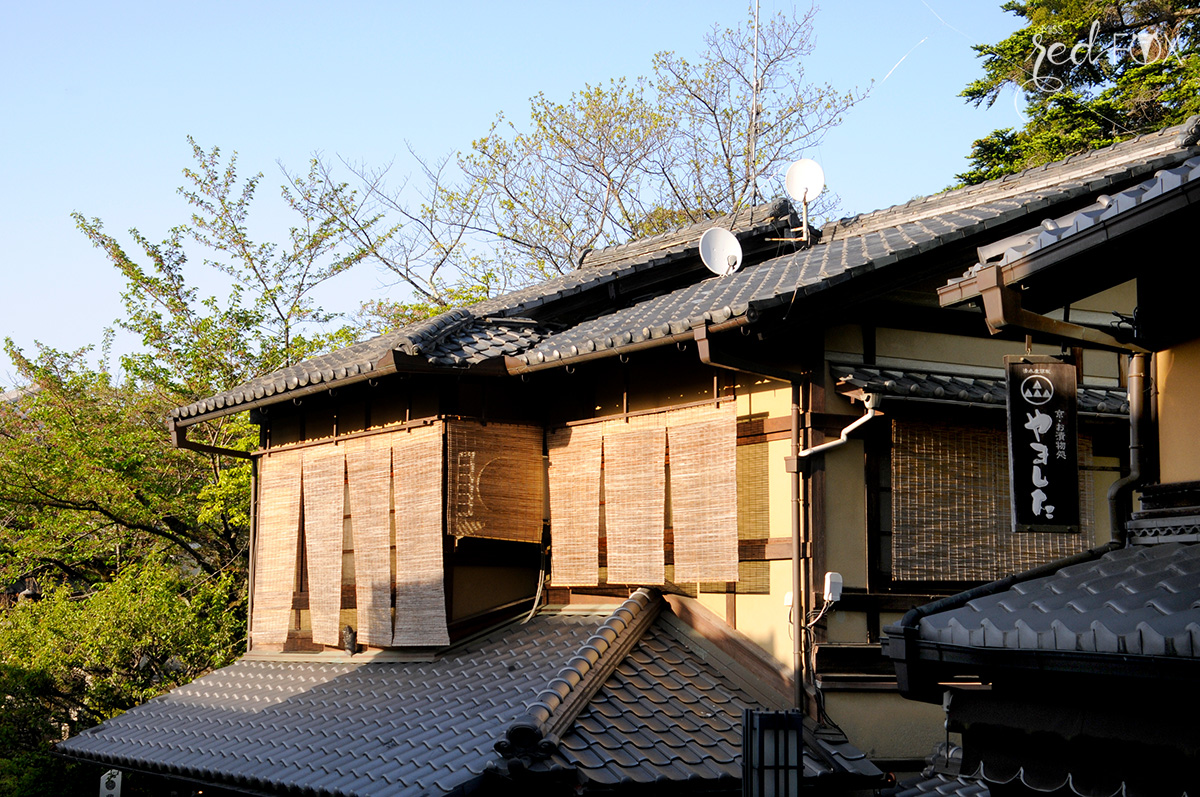 missredfox - Japan - Kyoto - 48