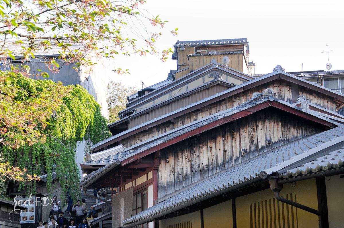 missredfox - Japan - Kyoto - 49