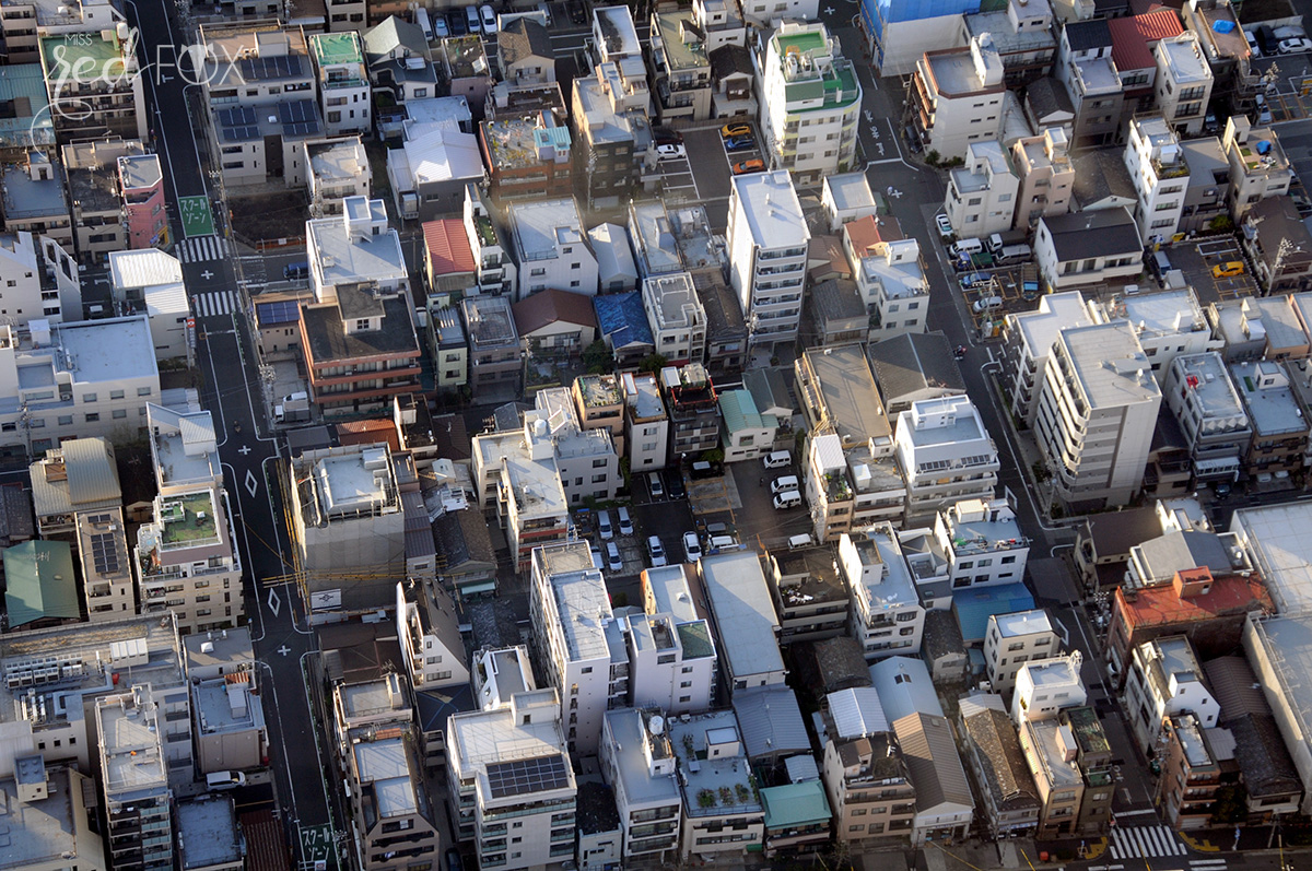 missredfox - Japan - Tokyo - 36