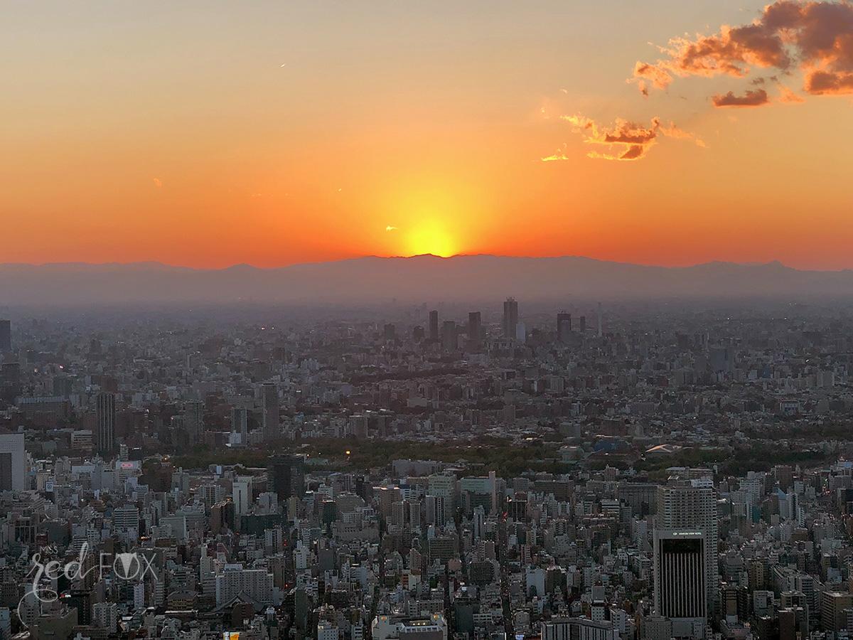 missredfox - Japan - Tokyo - 37