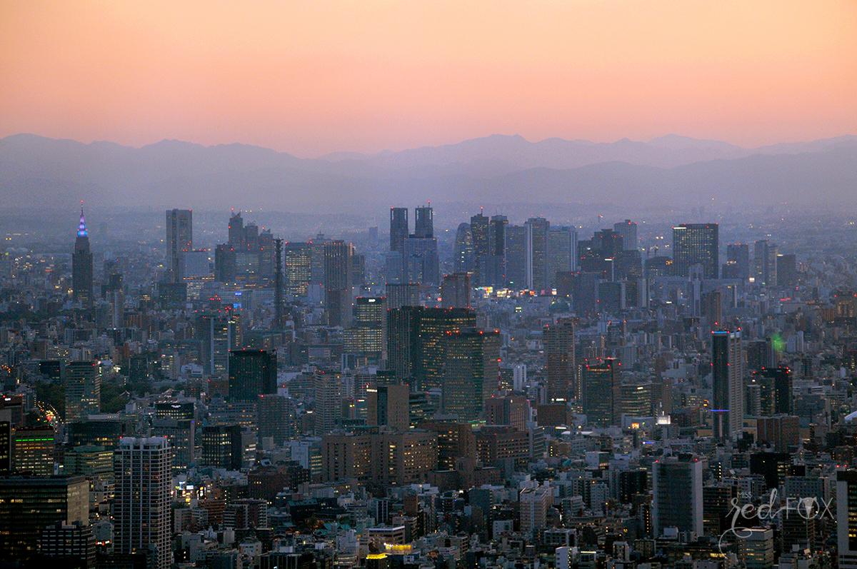 missredfox - Japan - Tokyo - 38
