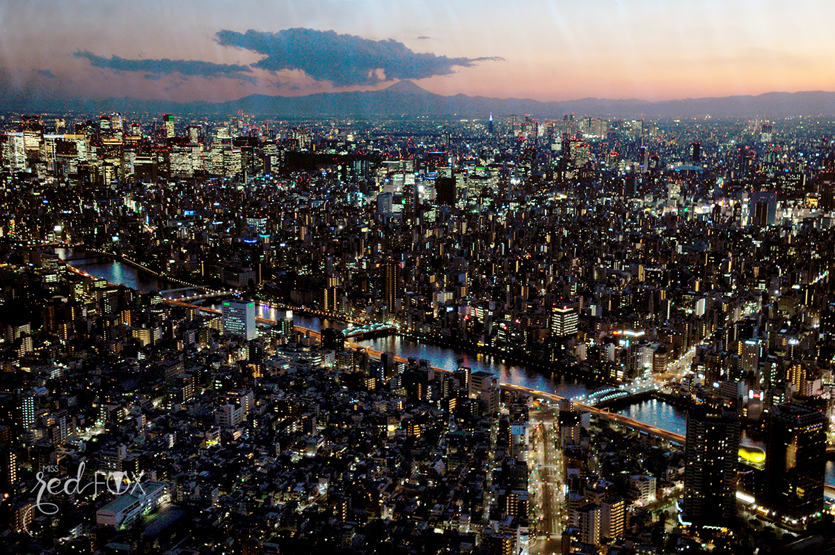 missredfox - Japan - Tokyo - 41