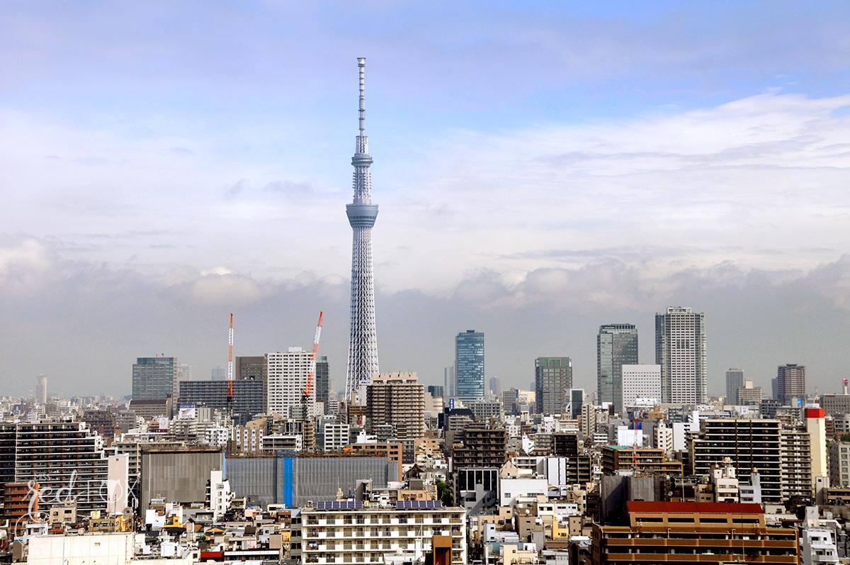 missredfox - Japan - Tokyo - 44